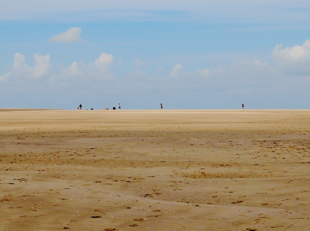 baie de somme marshes