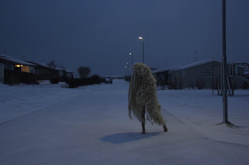Anna Rose: Iceland
