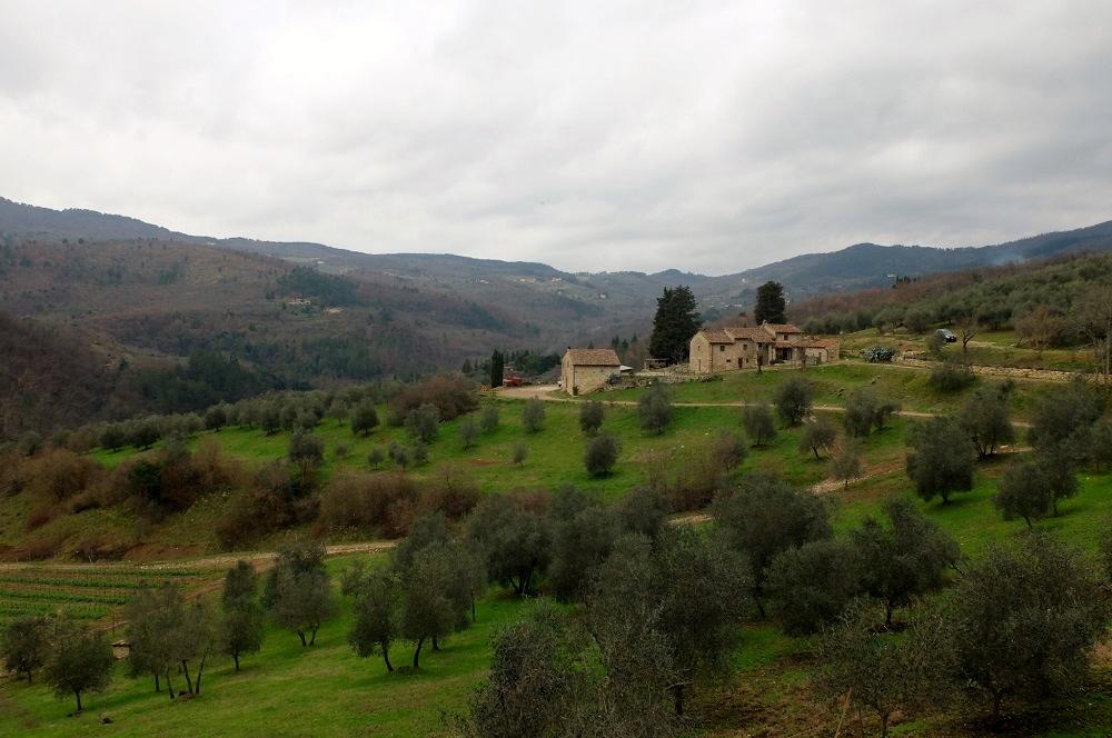 Trebbio-wine tasting - florence