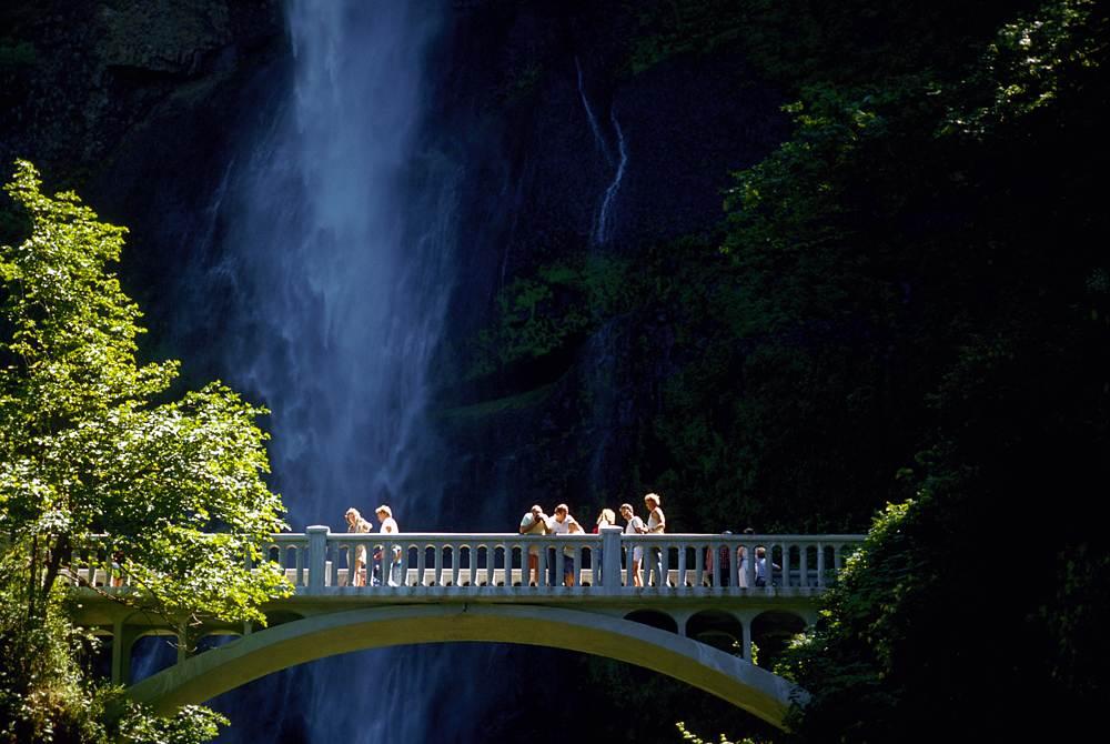 Columbia Gorge Waterfalls and Wine Tour