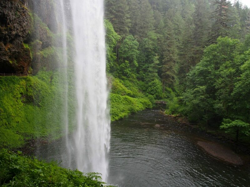 Silver Falls State Park on Willamette Valley Wine and Waterfalls Tour