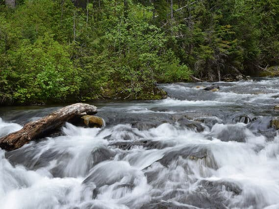 Nisqually River flowing from Mount Rainier