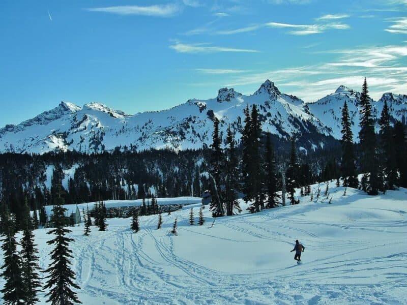 Person snowshoeing in Mt. Rainier National Park on tour