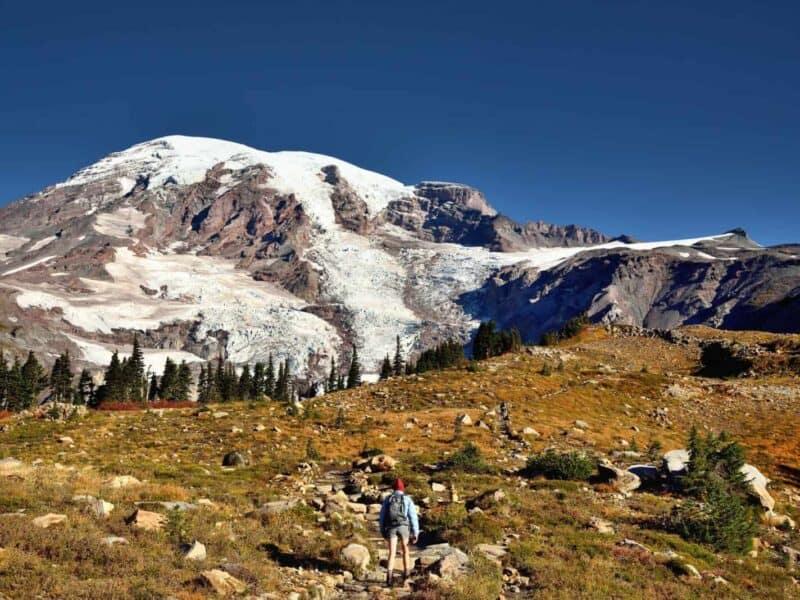 Man hiking Skyline Trail during Seattle to Mt. Rainier tour