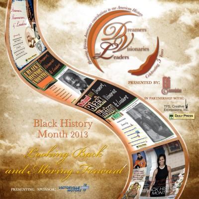 2013 dvl publication cover copy