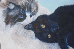 Ritas-Cats