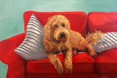 Sue-Eddy-Christens-dog