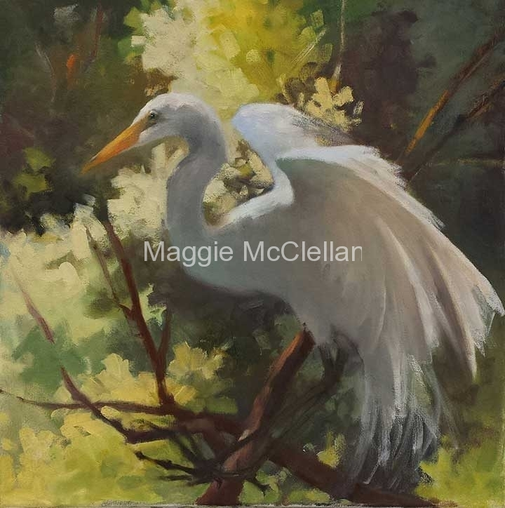 Susan's Egret  - Private Collection