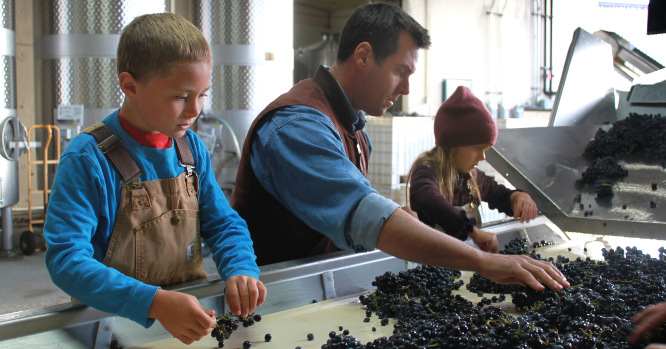 Paul et fils at the sorting table