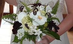 florist_main