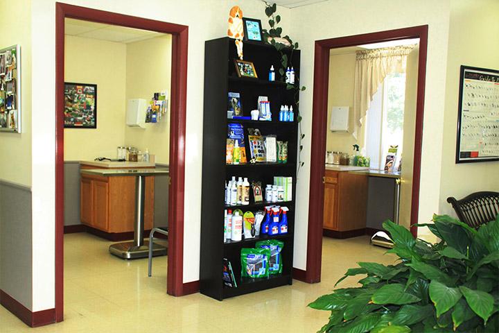 Veterinary Examination Rooms