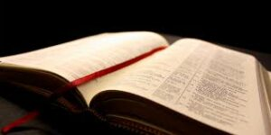 The Bible Endures