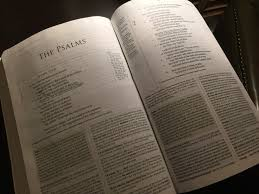 bible (30)