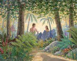 Common Questions on Adam and Eve