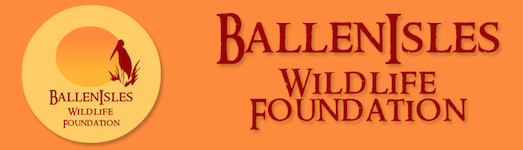 BallenIsles Wildlife Foundation