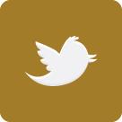 Wael Lahoud Twitter