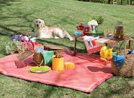 National Picnic Day
