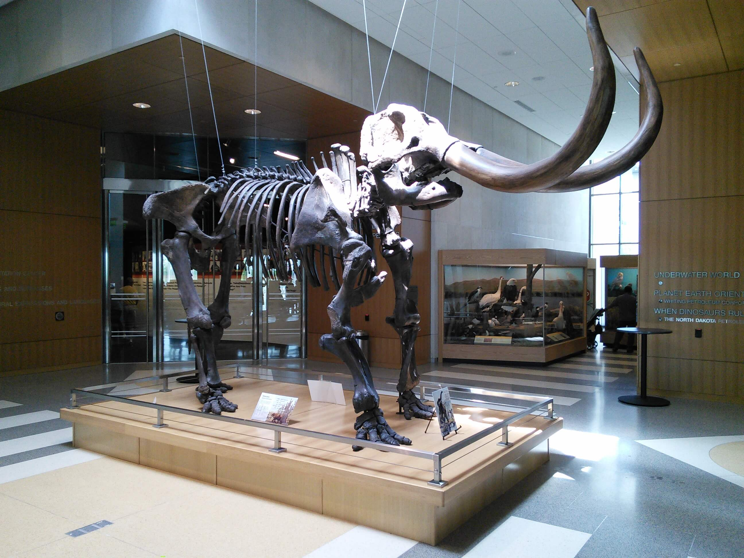 North Dakota Heritage Center Museum