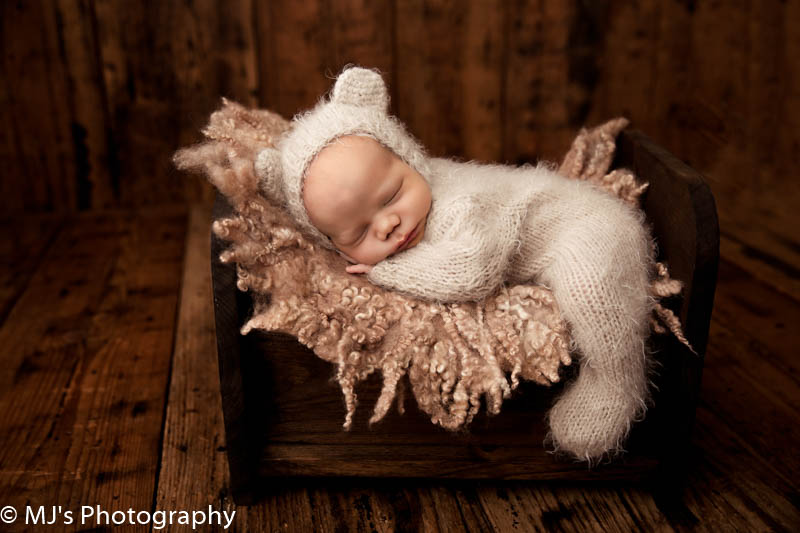 katy newborn photographer