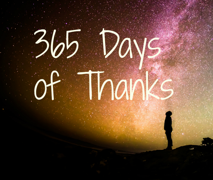 Gratitude Expressions for 365 Days of Thanks