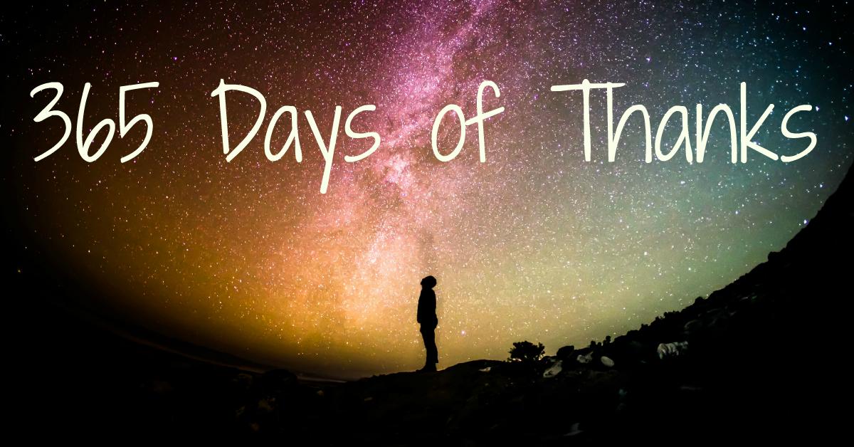 gratitude - 365 days of thanks