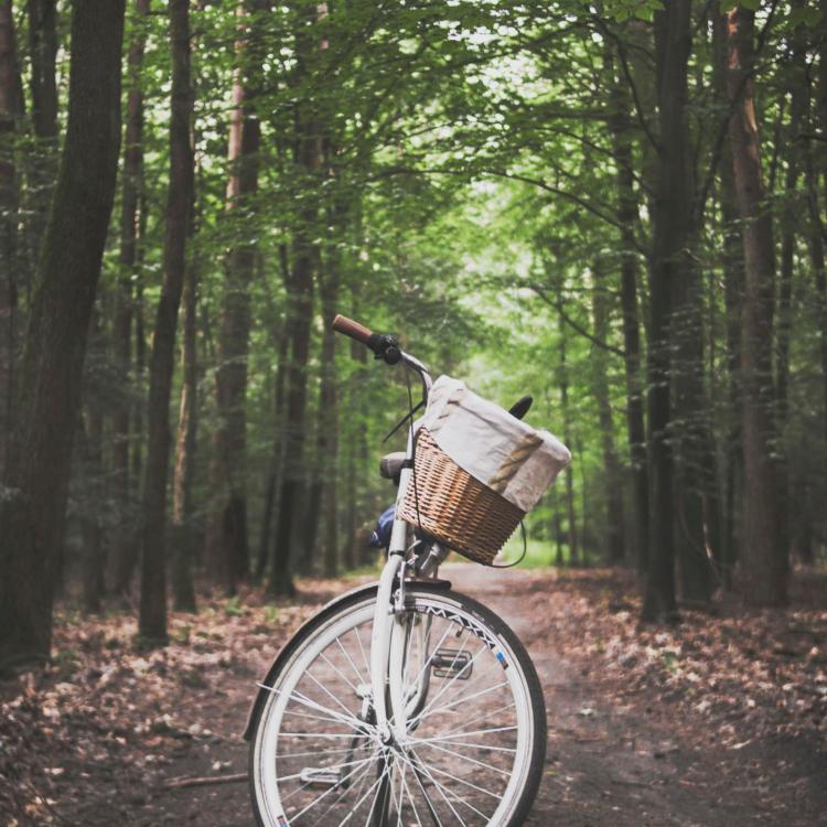 indulgent activities bike ride