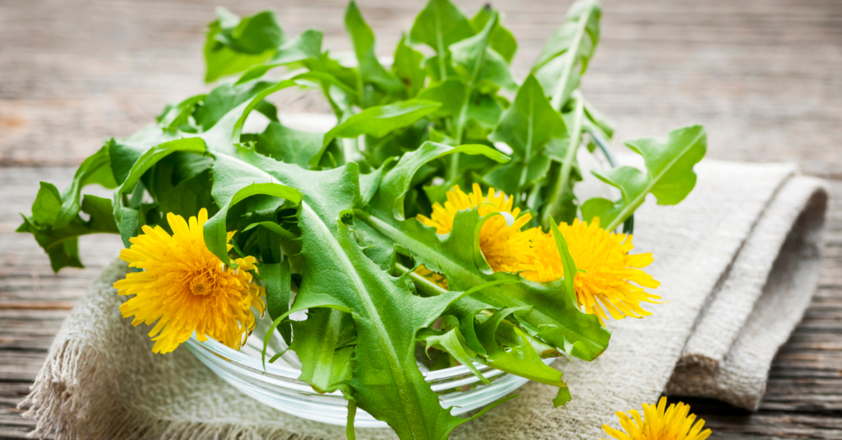 easy cleanse dandelion greens