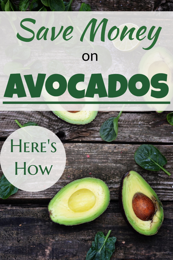 Save ,money on avocados -grocery saving tips for cheap avocado meals, cheap avocado toast, and cheap avocado recipes. Save money on healthy food and save money on healthy groceries. Avocado can become a cheap superfood for cheap superfood recipes. Read my secrets for cheap healthy eating. #avocado # superfoods