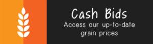 cash-bids-widget