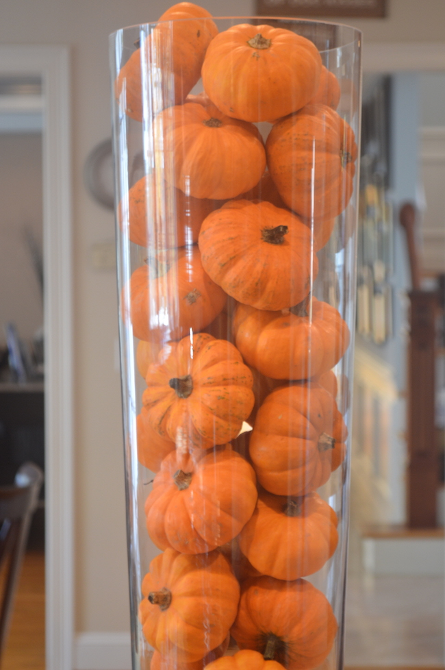 Mini Pumpkins in a Vase in the Kitchen