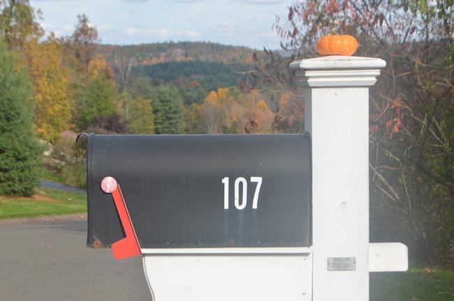Pumpkin on the mailbox