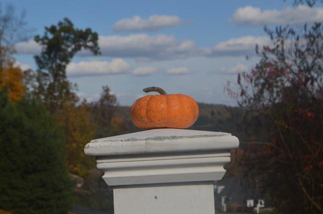 Pumpkin on the post