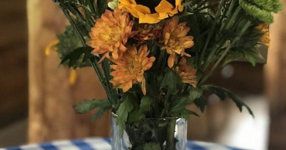 Oktoberfest Celebration