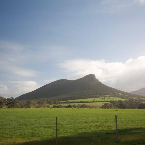 Rewilding the Grampians for Land Management