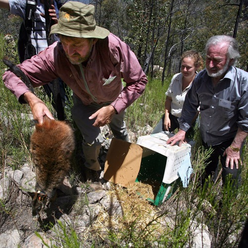 Community engagement key to environmental restoration