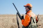 Antlerless Deer Licenses On Sale