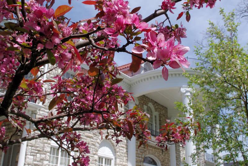 Spring at Beaumont Inn