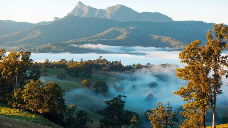 The Tweed. Photo: Destination NSW