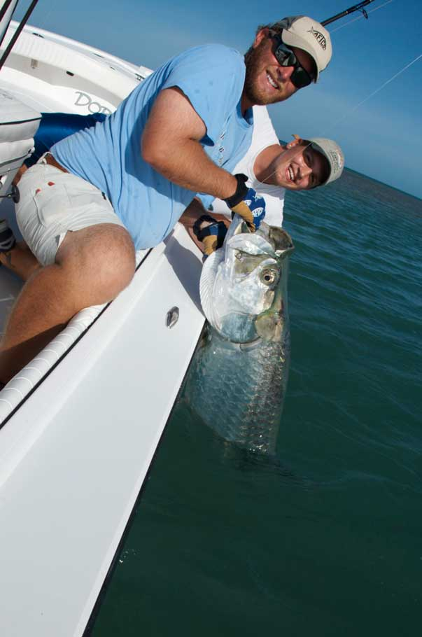 Tarpon boat-side after a long battle!