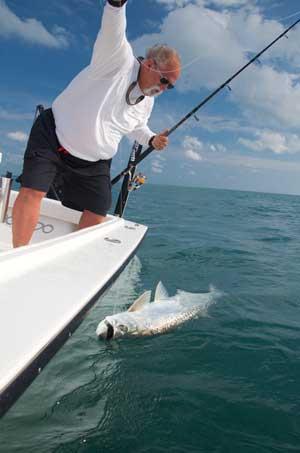 Holding a Key West tarpon