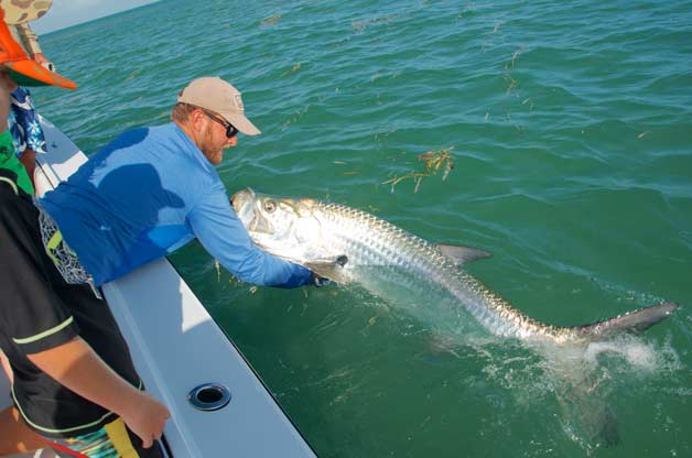 Tarpon release in Key West
