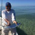 key west tarpon fishing charters