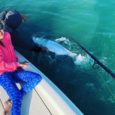 key west tarpon fishing