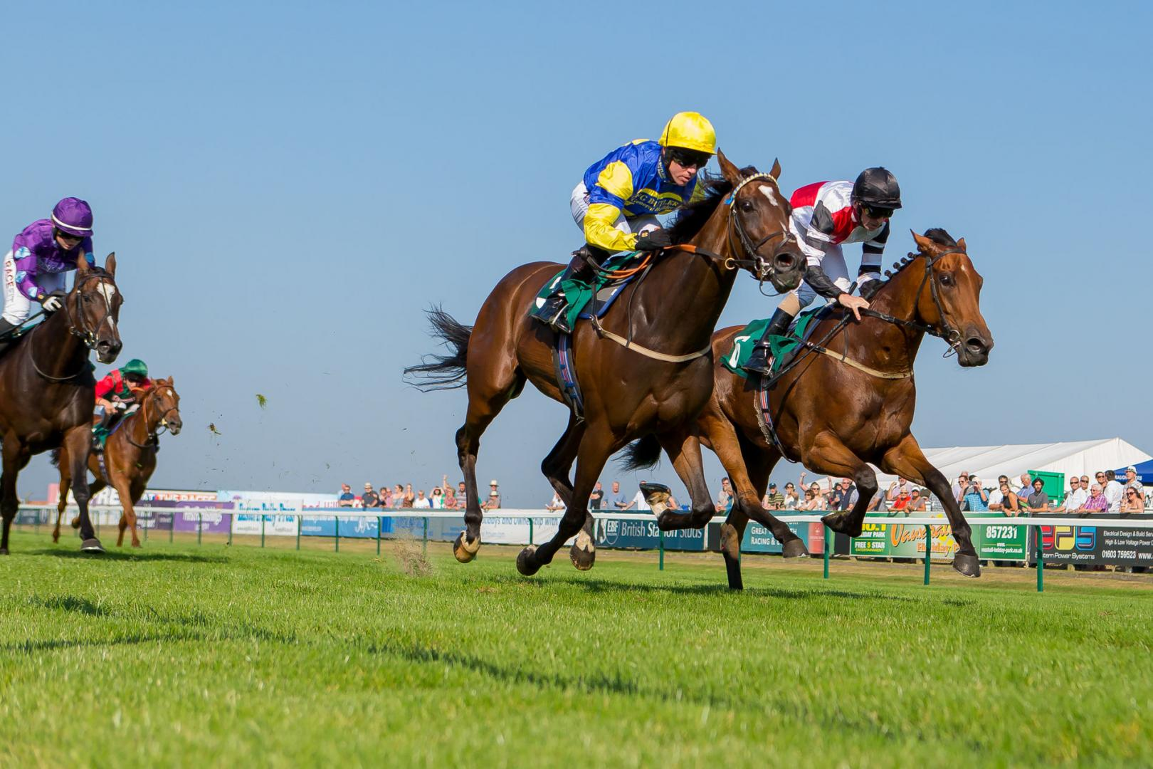 Horse Racing Photography Norfolk