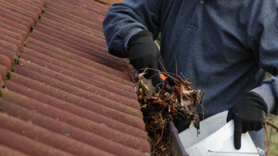 Cleaning Your Rain Gutters