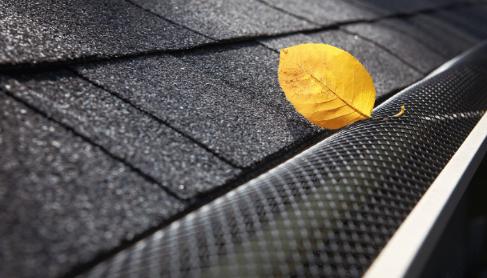 Do Gutter Leaf Guards Work?
