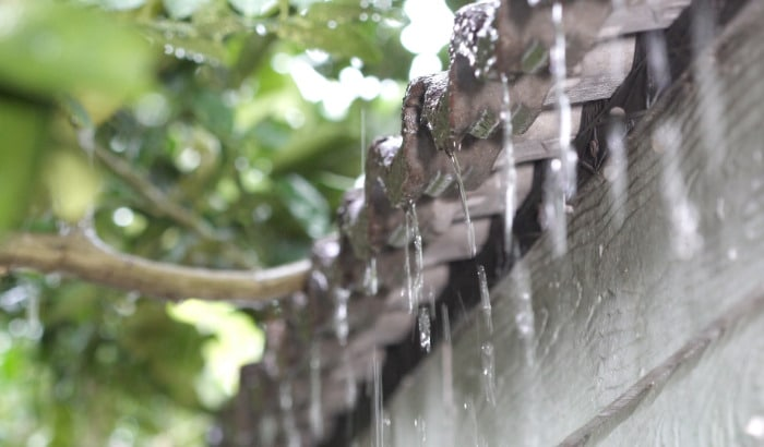 How to Prepare Your Siding and Gutters for Fall?