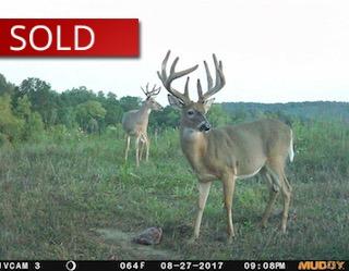100 Acres Monroe County