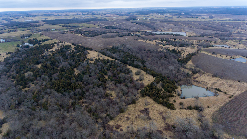 395 Acres Clarke County Iowa | Hunting Land for Sale