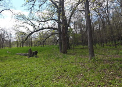 127 Acres | Franklin County Iowa